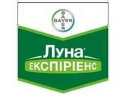Фунгицид Луна Экспириенс 400 SC (Bayer Crop Science)