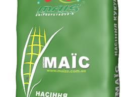 Гибрид кукурузы ДМ Виктория ФАО 290 МАИС (Маїс Дніпро)