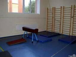 Гимнастическое оборудование для спортзалов