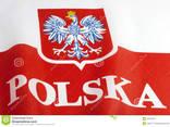 Годовые польские приглашения, Воеводы - фото 1
