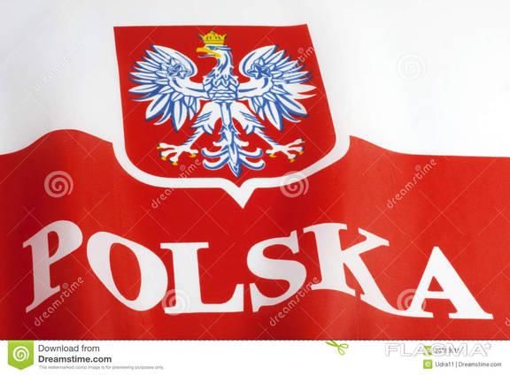 Годовые польские приглашения, Воеводы