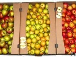 Гофроящик под яблоки,персики,сливы,апельсины.