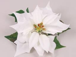 Головка Пуансетии белая 19 см.
