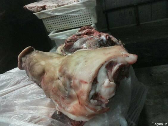 Головы свиные