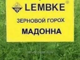 Горох Мадонна - семена, Lembke
