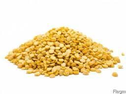 Горох желтый колотый на экспорт