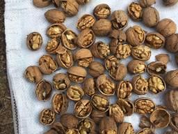 Грецкий орех/walnut/ ceviz