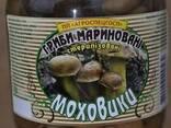 Грибы маринованные маслята, опята, моховик(польский), грузди - фото 2