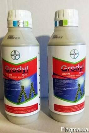 Гродил макси, grodyl maxi гербицид на злаковые, кукурузу