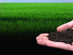 Грунт, чернозём, плодородный грунт, земля