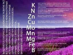"""Гумат Калия BioRosT """"Старт"""" микроудобрение калийное"""