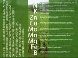 """Гумат Калия BioRosT """"Универсальный"""" из птичьего помета"""