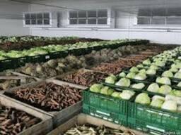 Холодильная камера для хранения овощей (овощехранилище)