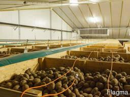 Холодильный склад для хранения картофеля овощехранилище