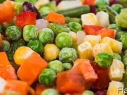 Холодильные камеры для хранения овощей