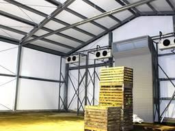 Холодильные Камеры для Овощей и Фруктов