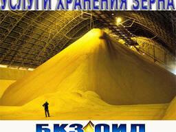 Хранение зерна на складе. Услуги по хранению зерна. Элеватор