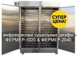 Инфракрасный сушильный шкаф Фермер для сушки яблочных чипсов - фото 3