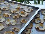 Инфракрасный сушильный шкаф Фермер для сушки яблочных чипсов - фото 6
