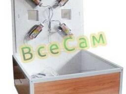 Инкубатор автоматический «Гусыня» ИБ-54Ц на 54 гусиных яйца