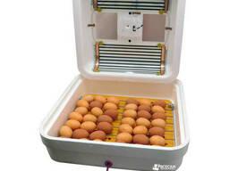 Инкубатор бытовой Рябушка ИБМ-70 яиц /цифровой выносной. ..
