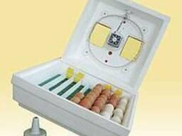 Инкубатор для яиц Квочка МИ-30-1