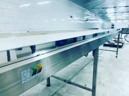 Инспекционный конвейер из пищевой нержавеющей стали