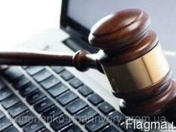 Интеллектуальная собственность. Регистрация и защита