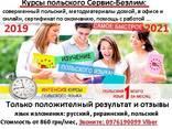 Интенсивный курс польского языка очно в офисе и онлайн - фото 1