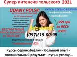 Интенсивный курс польского языка очно в офисе и онлайн - фото 3