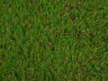 Искусственная декоративная трава Condor Grass (Бельгия) - фото 8