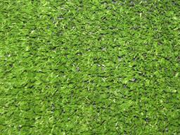 Искусственная трава CCGrass YP-7 для дома