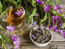 Иван чай , кипрей зніт іван-чай