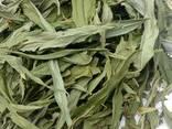 Иван чай (лист сухой) - фото 4