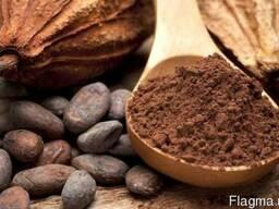 Какао порошок алкализированный Favorich