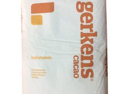 Какао-порошок алкализированный Gerkens DB 82