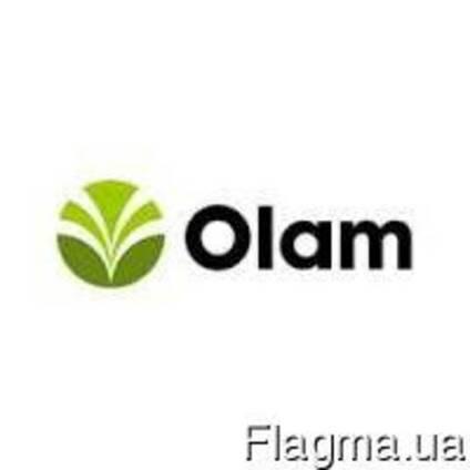 Какао-порошок алкализированный D11RB, OLAM
