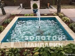 Копинговый камень для басейна - фото 2
