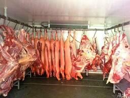 Камеры для мяса-морозильные, холодильные с установкой. Крым.