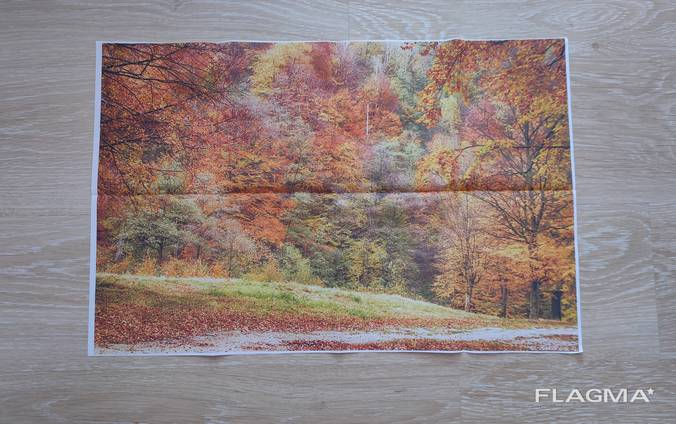 Картина на стену Осень , картинка