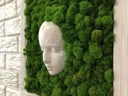 """Картина со стабилизированым мхом """"Лесная нимфа"""" 3D еффект MiNature Moss"""