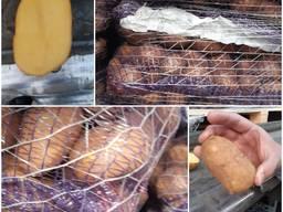 Картофель от 20 тонн