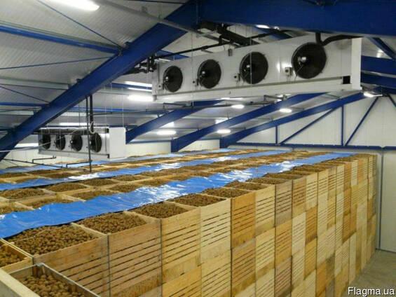 Картофелехранилище (Холодильная камера для хранения картофел