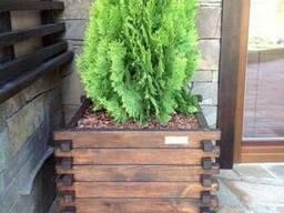 Кашпо деревянное для растений
