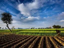 "Каталог СД ""Агробизнес Украины 2019 г. """
