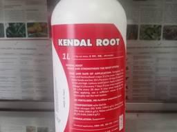 Кендал Рут/Kendal Root