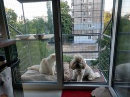 """Клетка для кошки на окно. """"Броневик"""" Днепр."""