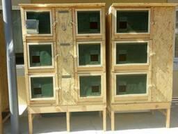 Клетки для кроликов, продам, изготовлю мини-ферму, шэд