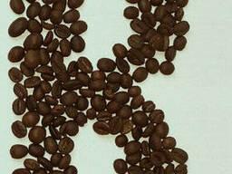 Кофе в зёрнах робуста Вьетнам Grade 1, SCR. 18. ..
