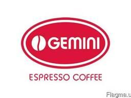Кофе зерновой Чай листовой и пакетированный Gemini